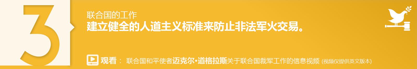 3. 建立健全的人道主义标准来防止非法军火交易。